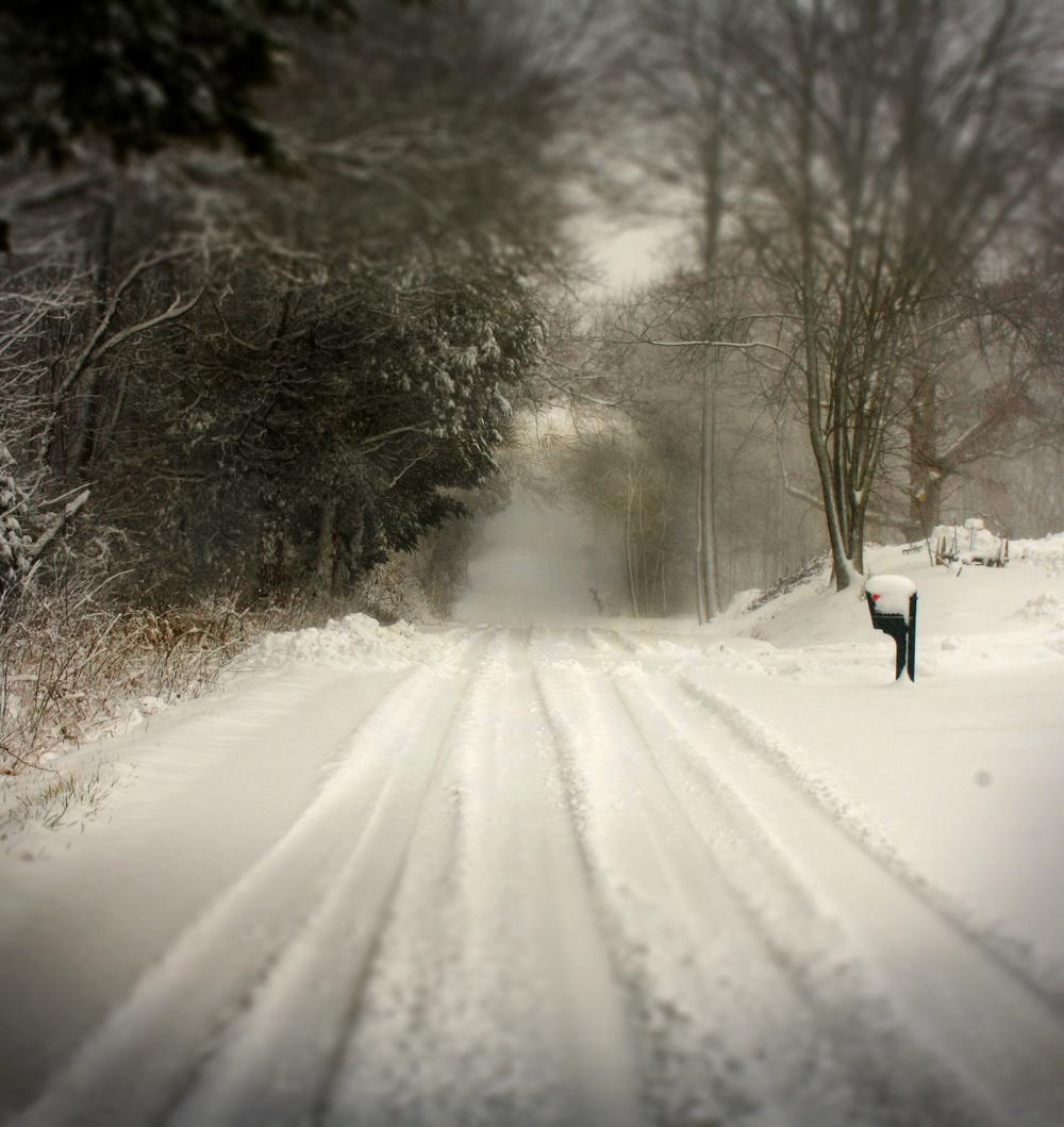 Winter's Road.