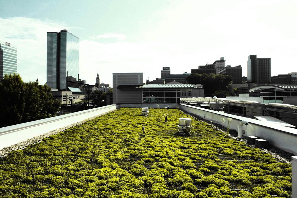 Green-Roof.jpg