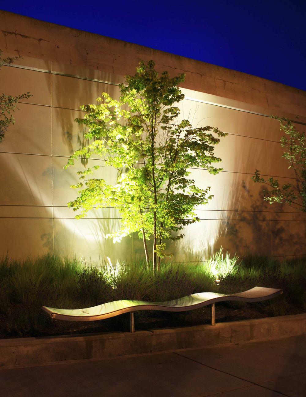 Tree-uplighting.jpg
