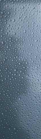 rain-blog.jpg