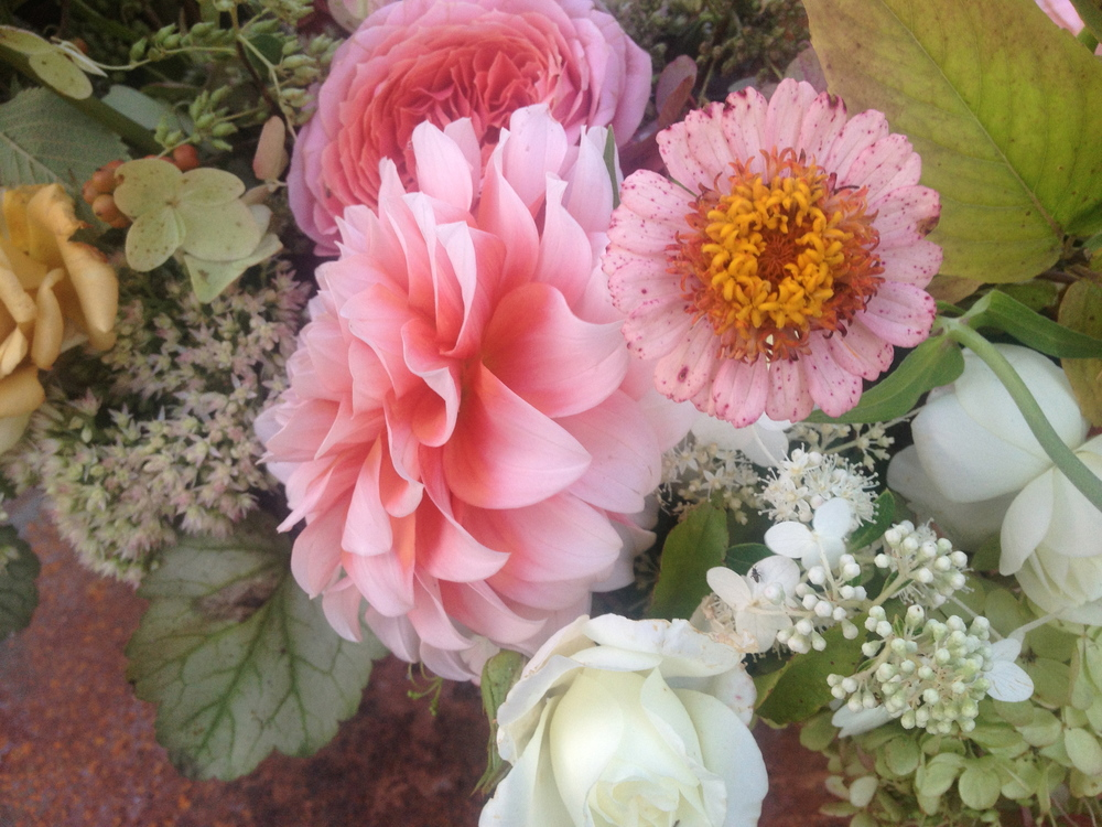 Philosophy Flowers