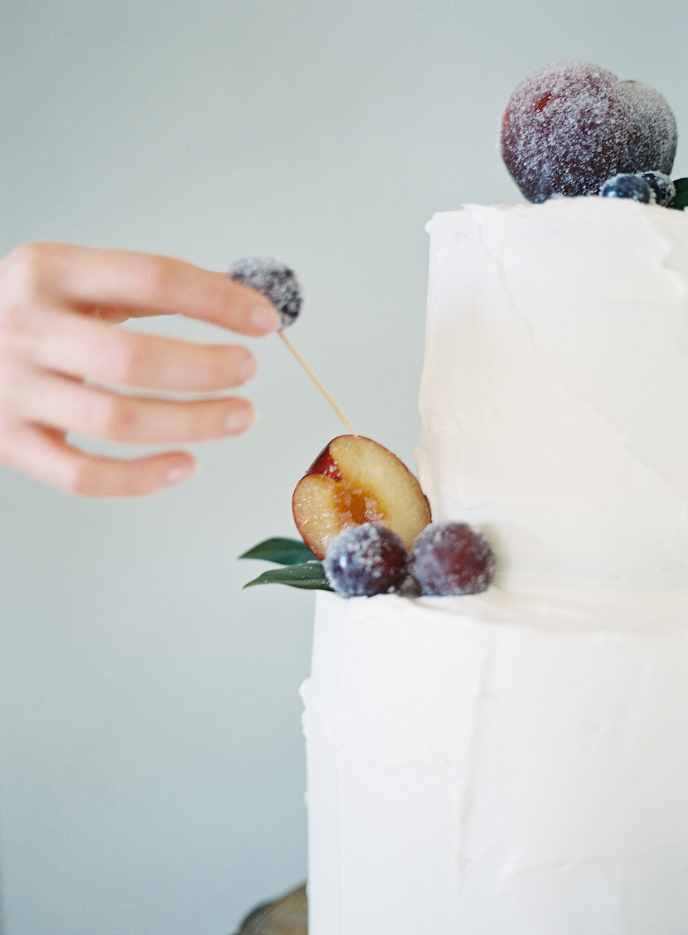 Sugared Fruit Tutorial, Philosophy Flowers, Heather Payne Photography