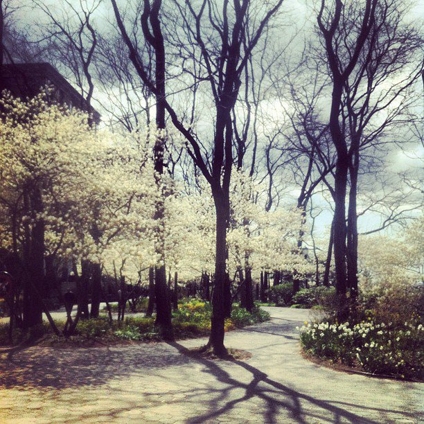 Battery Park City is gorgeous in the spring...