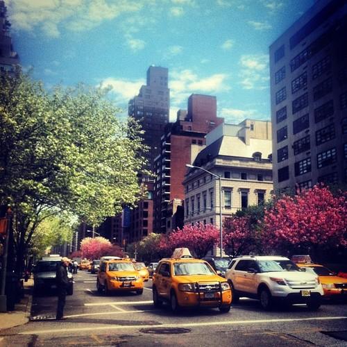 Park Avenue, East 70's