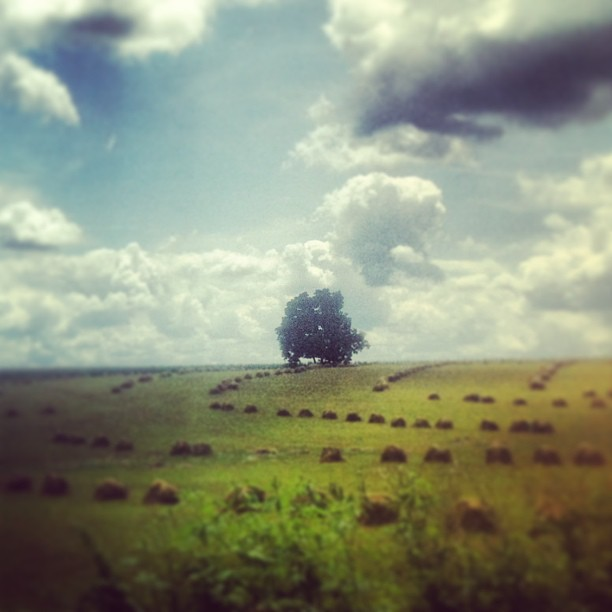 A gorgeous ride through Amish country in Holmes County reminds me of the beautiful landscape in NE Ohio...