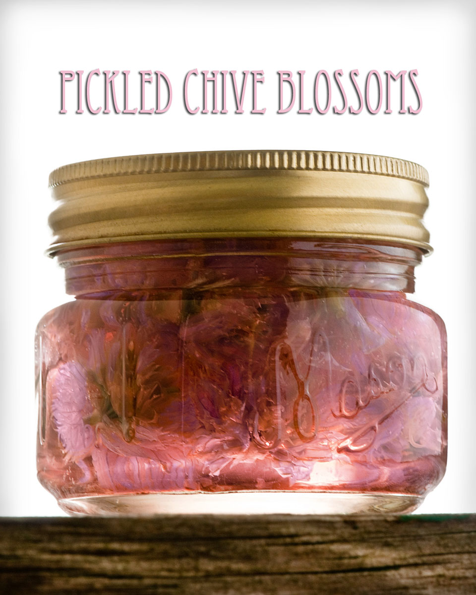 jar of pickled chive flowers