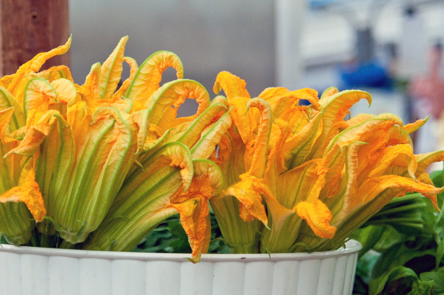 Bunches of Squash Blossoms - Market in San Remo