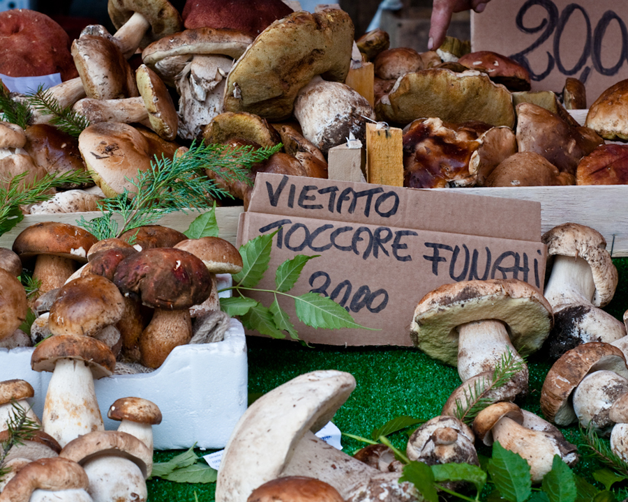 """Please don't touch the mushrooms"", farmers market in Murazzano, Italy."