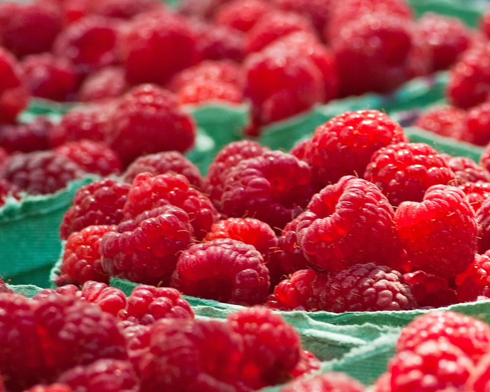 fresh local raspberries