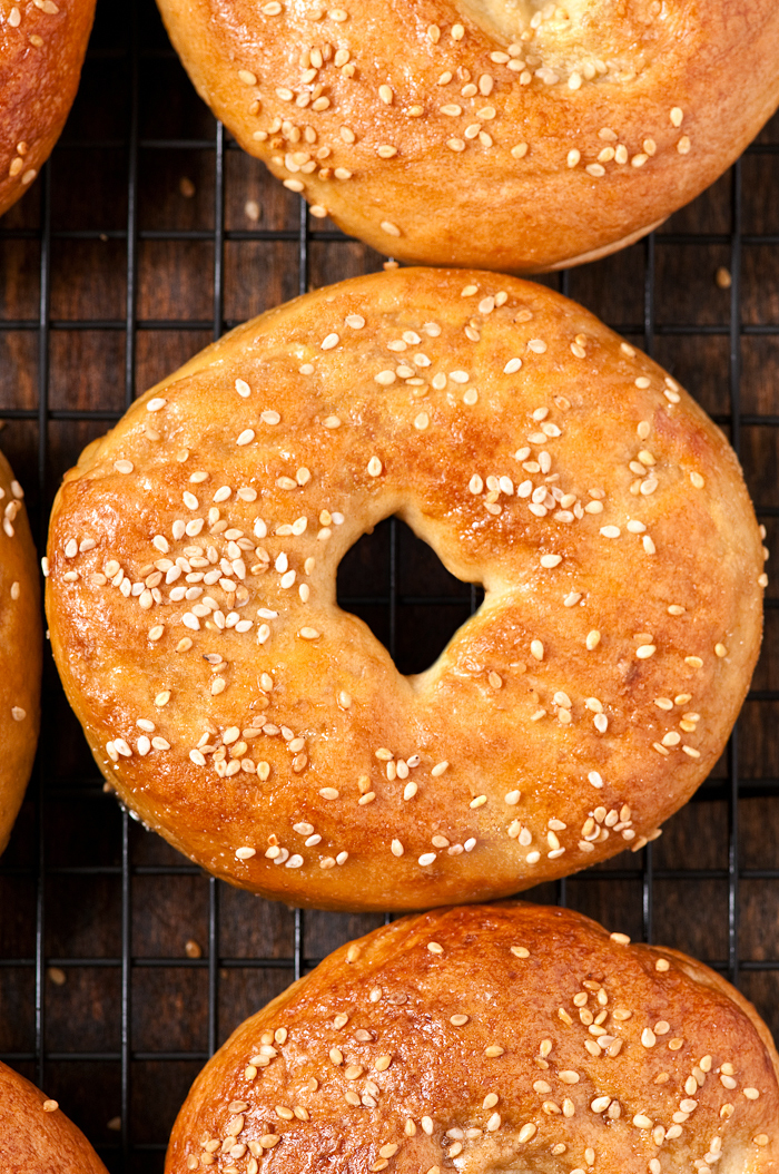 montreal-style homemade bagels
