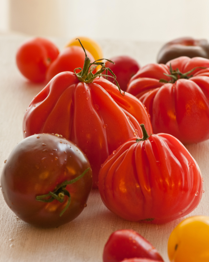 heirloom tomato.jpg