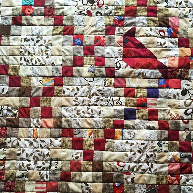 I'm calling it The Cardinal in the Garden. My quilting project this Christmas, the fabrics are mostly botanical prints - flowers and vines and a few snails. I figured out how to piece a cardinal in a 5x5 block to fit into my double Irish chain #veryproud #patchwork #quilt #doubleirishchain #cardinal #garden #botantical #strippiecing #instagood #homemade
