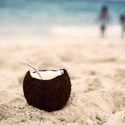 yes-thats-a-rum-filled-coconut.jpeg