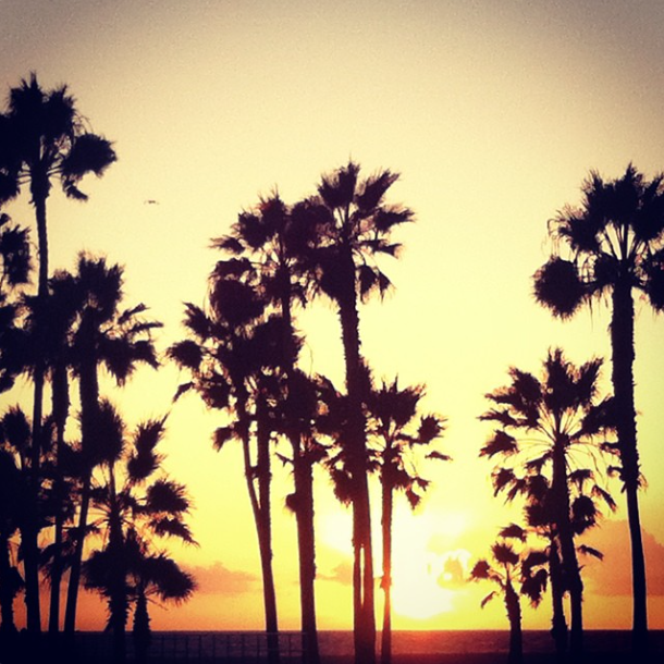 #venicebeach #california amazing #sunset #love #beach #roadtrip