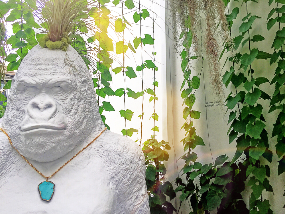 Special thanks to Plant the Future for allowing us to use this incredible gorilla