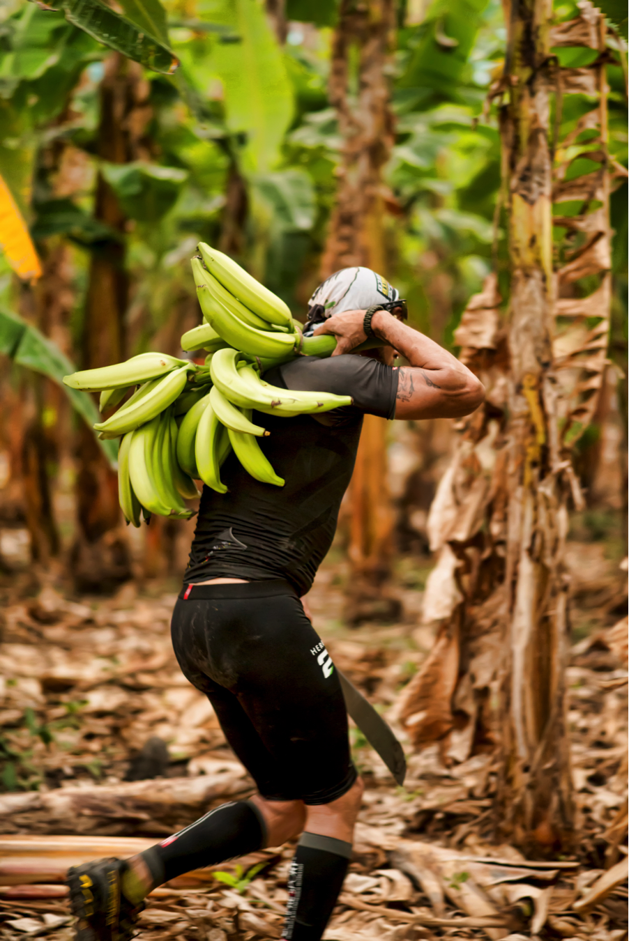 From here the racers headed to a plantain plantation to find there bib number randomly tied to a tree.  Once they found their bib they had to harvest the bunch of plantains from that tree.