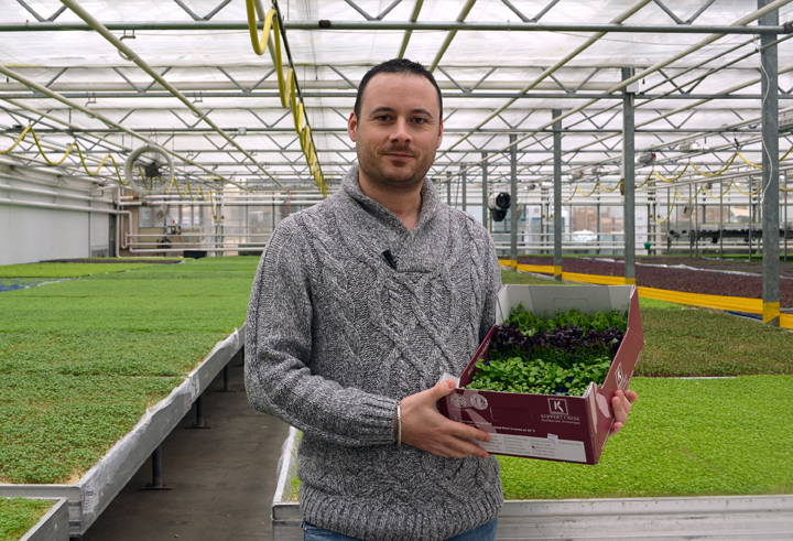 Nicolas Mazard, Director of Sales & Marketing for Koppert Cress USA