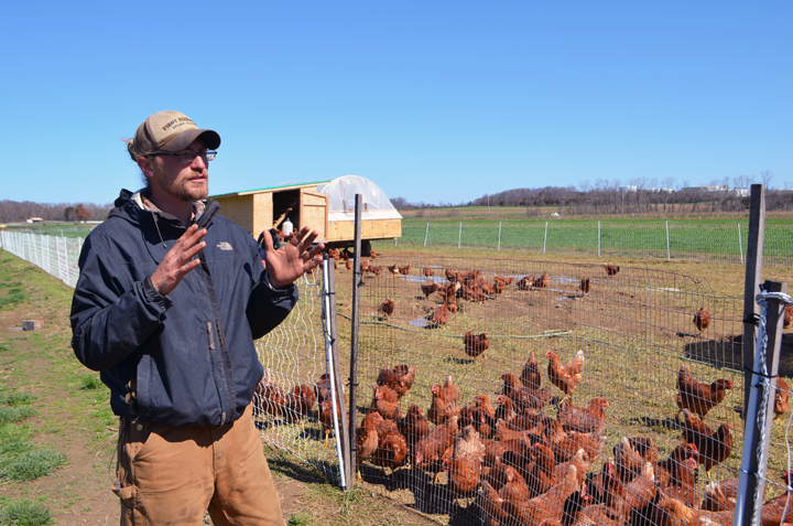 "Chris, Garden of Eve's Farmer gave me a tour of their ""Egg mobiles"""