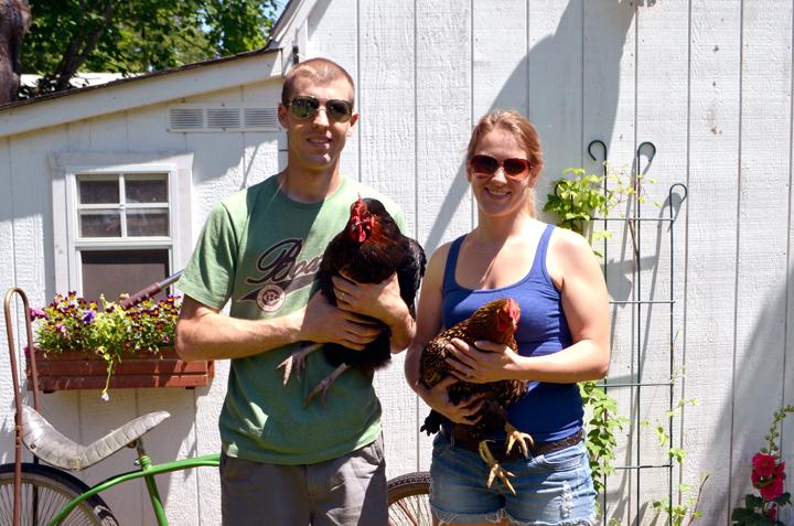 vultaggio hen house.jpg