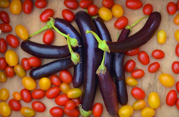 Eggplantcherrytomato.jpg