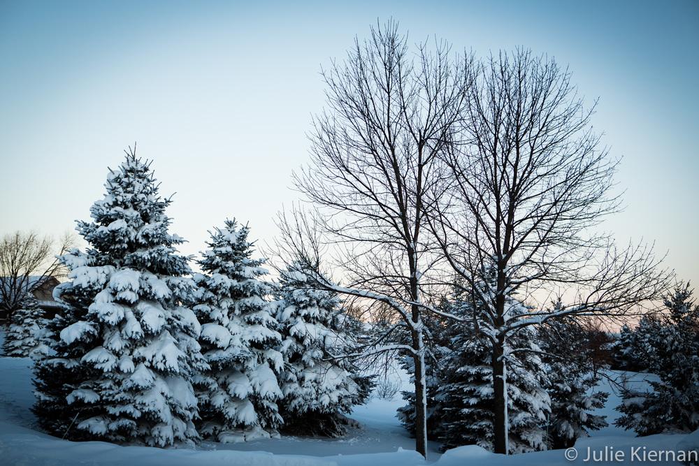 17-52-2 winter scene-0450.jpg