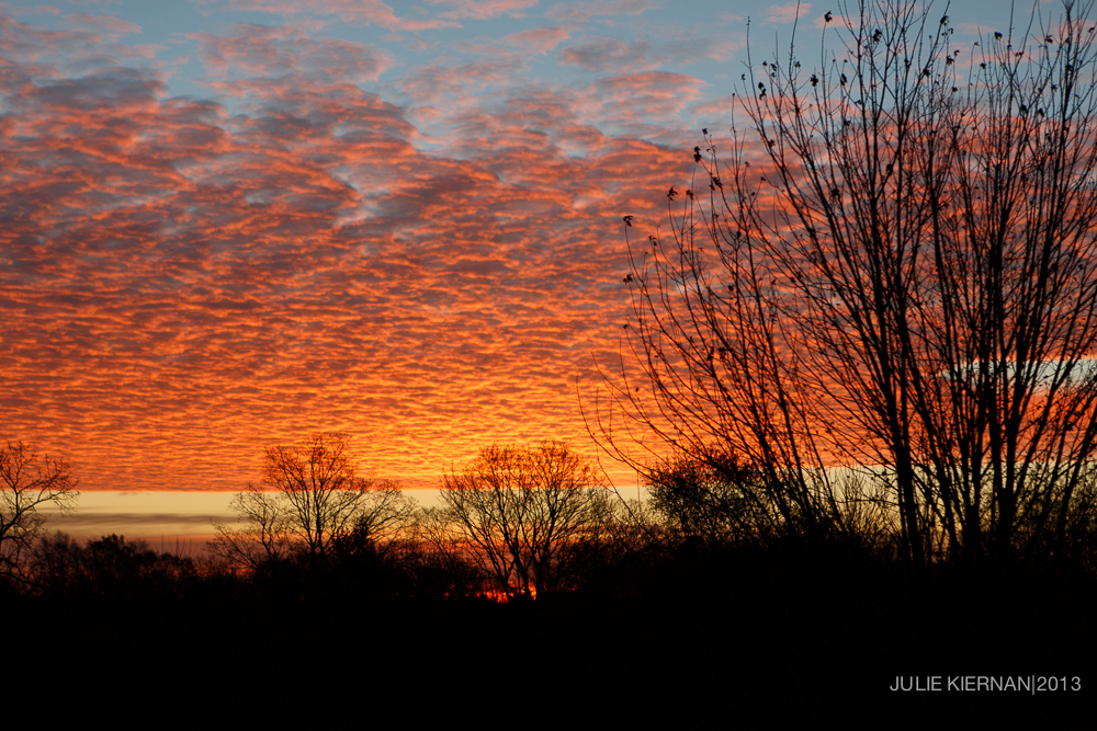 52-2-7 Sunrise from my living room