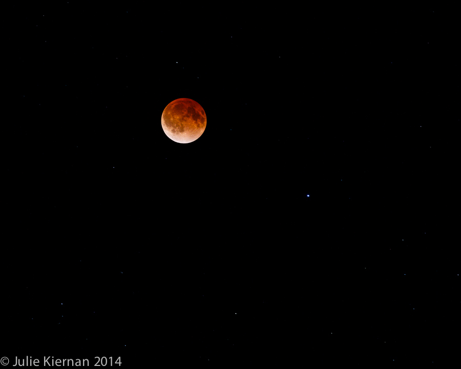 Blood Moon Lunar Eclipse 4-14-2014 approx. 3:00 CT (4)