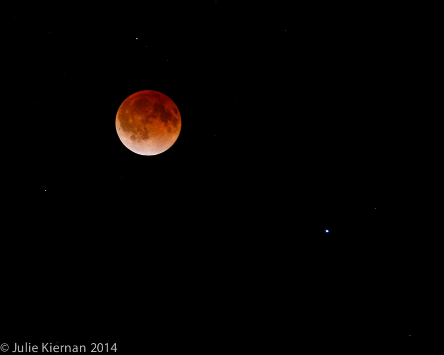 Lunar Eclipse (2)