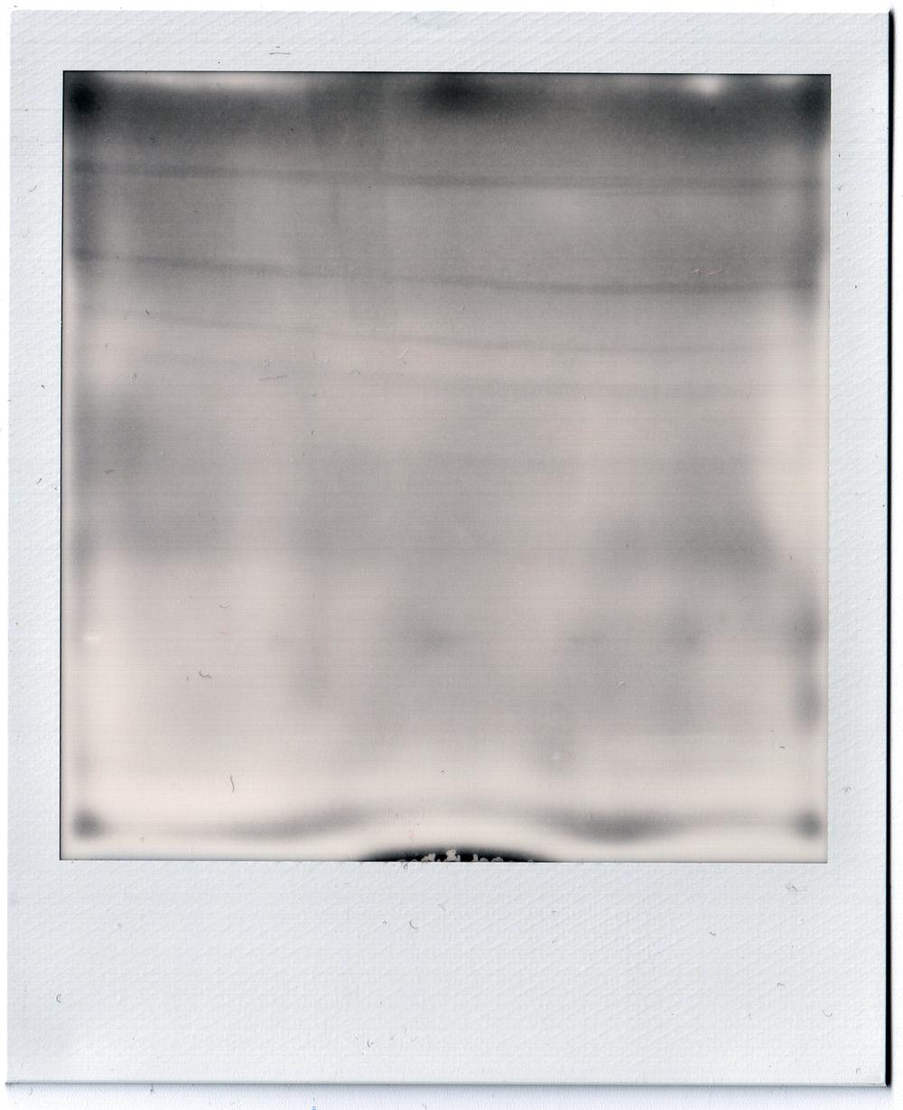 WhiteSx-70.jpg