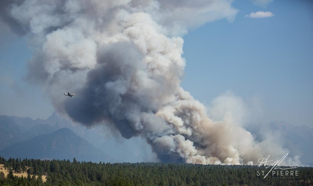 Fire crews pull out of Kootenay area - The unprecedented, aggressive behaviour of three blazes in southeastern British Columbia has forced firefighting crews to withdraw from the area, the B.C. Wildfire Service said on Friday.