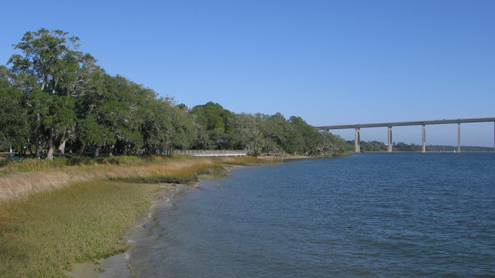 Wando River bordering Daniel Island
