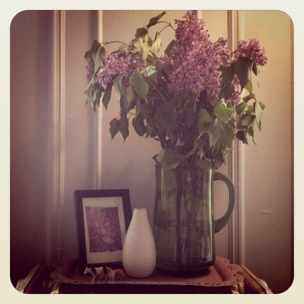 Lilacs from the farmers market.