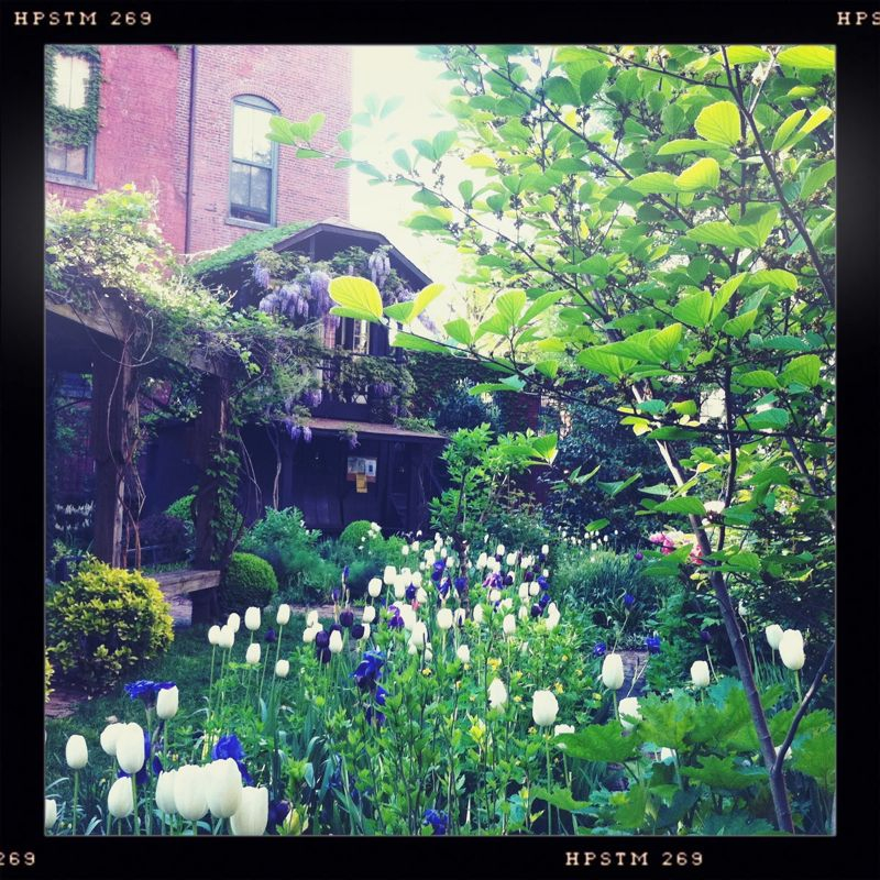 I just walked onto the secret garden on 6th street