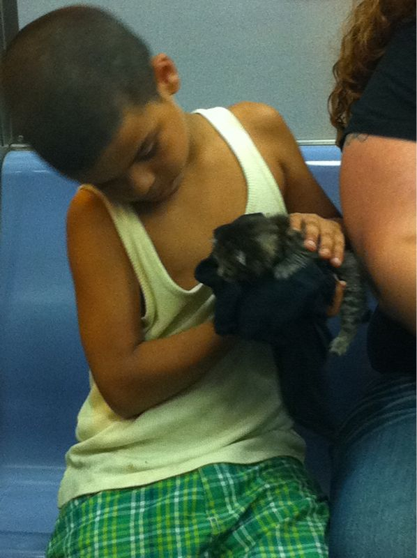 Little boys on the subway with teeny kittens are the bestest.