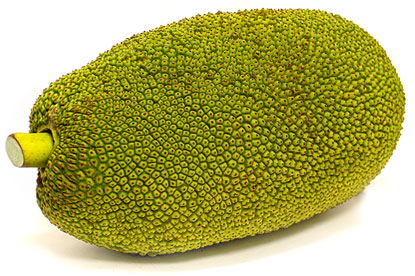 Jackfruit - Nutrition and Calories — The Grubbery