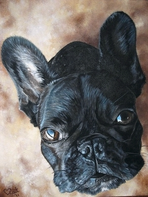 This painting of Frankie, a French Bulldog, is a commission painting that will be loved and treasured by his owners forever.