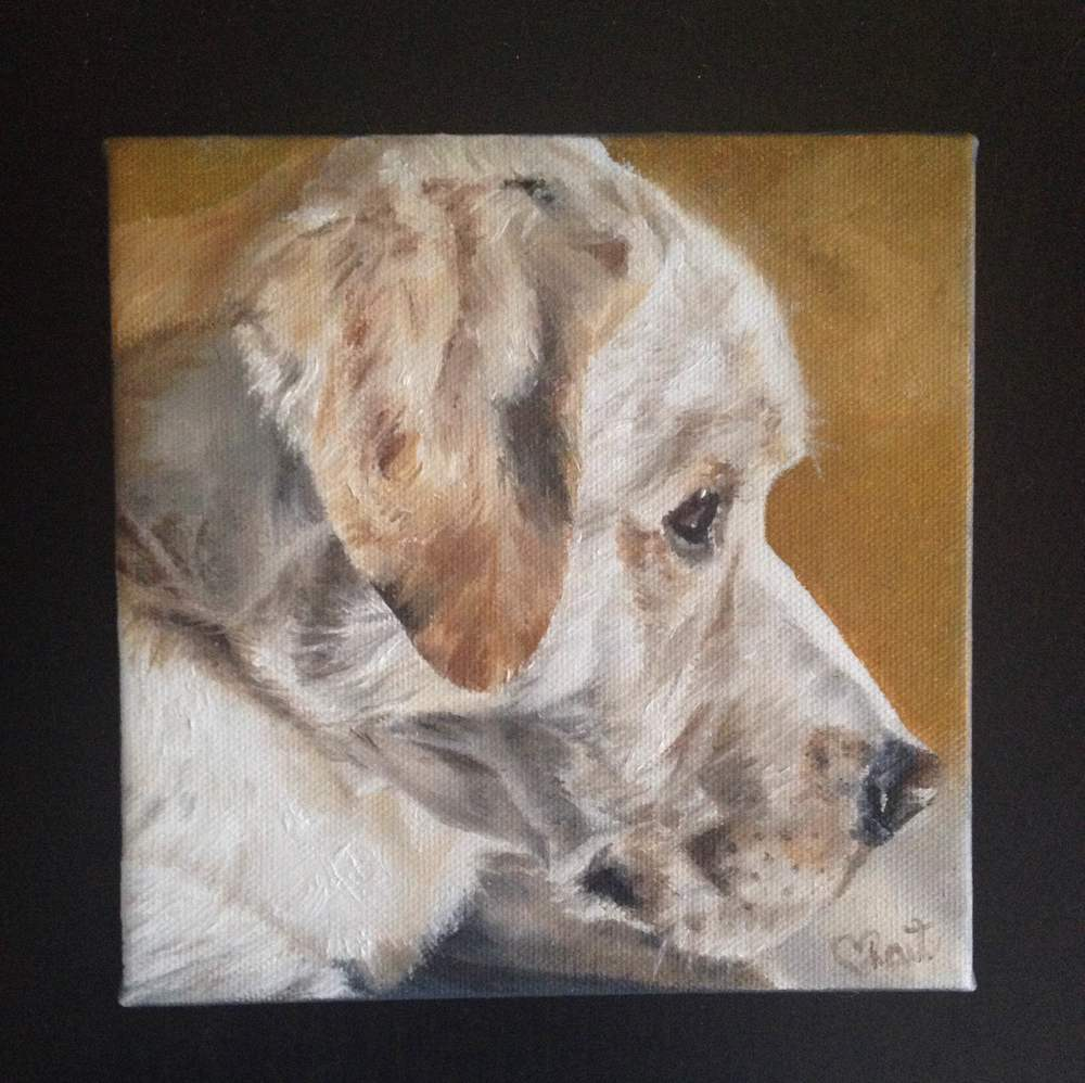 """Bodie"" 6 x 6 '' oil painting commissioned pet portrait"