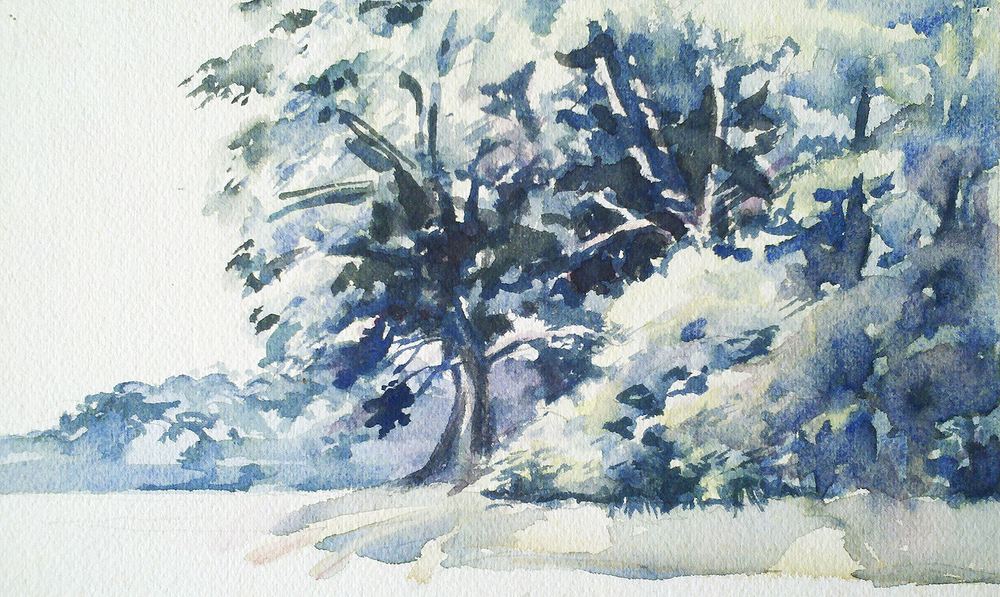 watercolor study in the del mar va peninsula.jpg