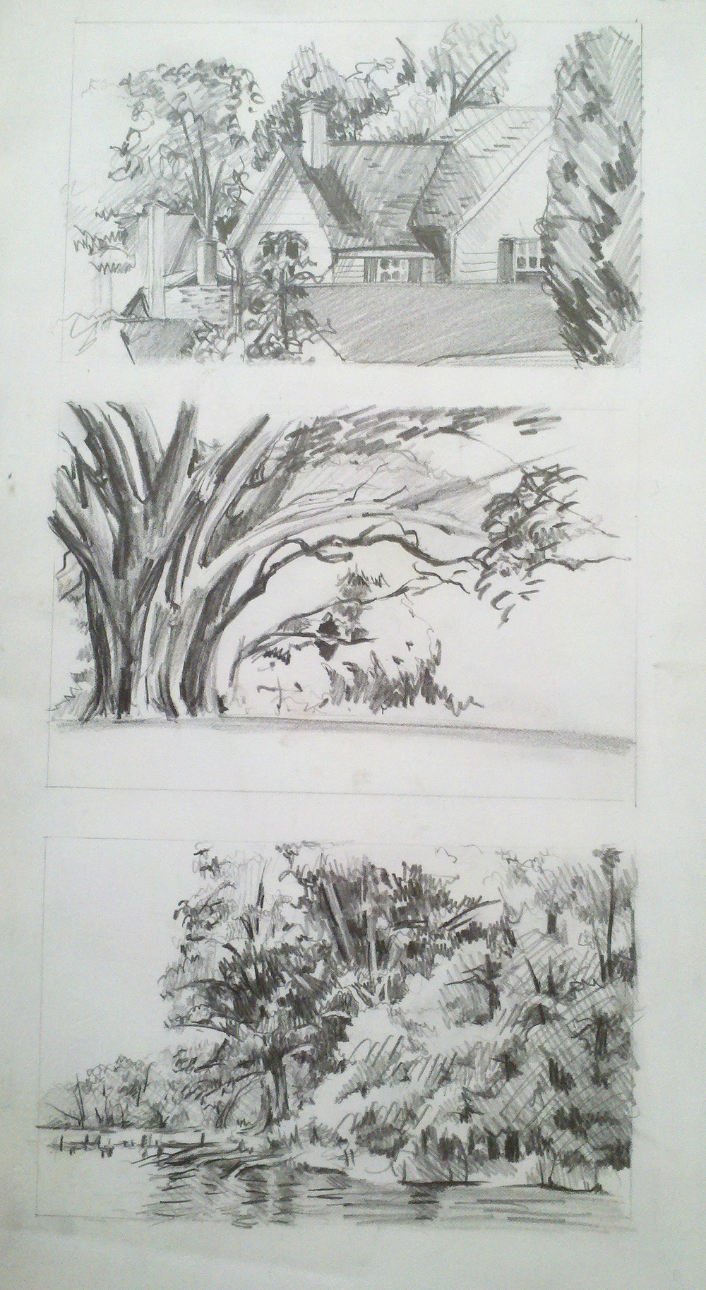 sketches for watercolors.jpg