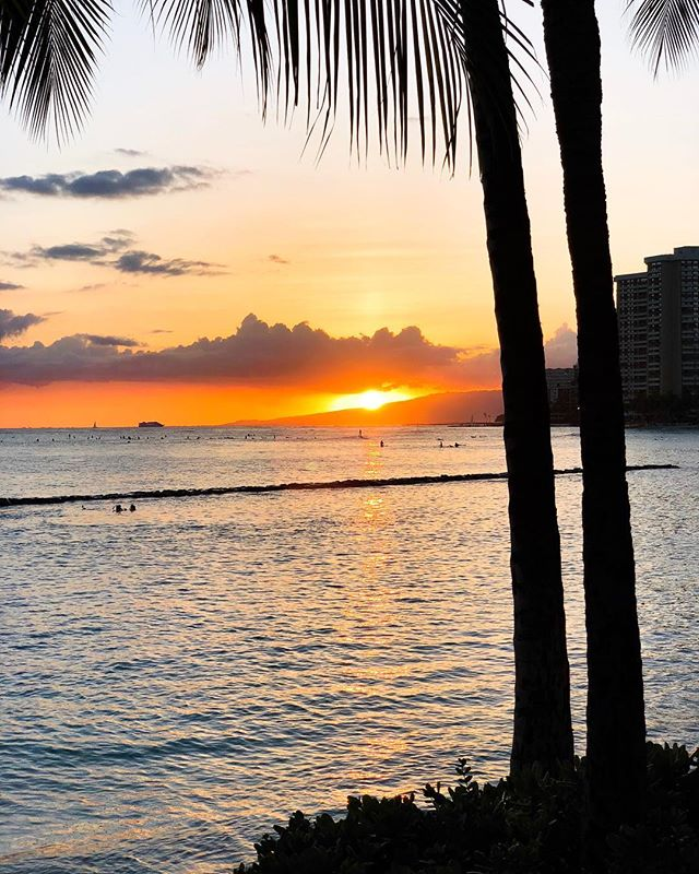 Yet another Waikiki sunset • #Hawaii #Oahu . . #shotoniphone #iphonex #sunset #beach #palmtree #surfing #silhouette