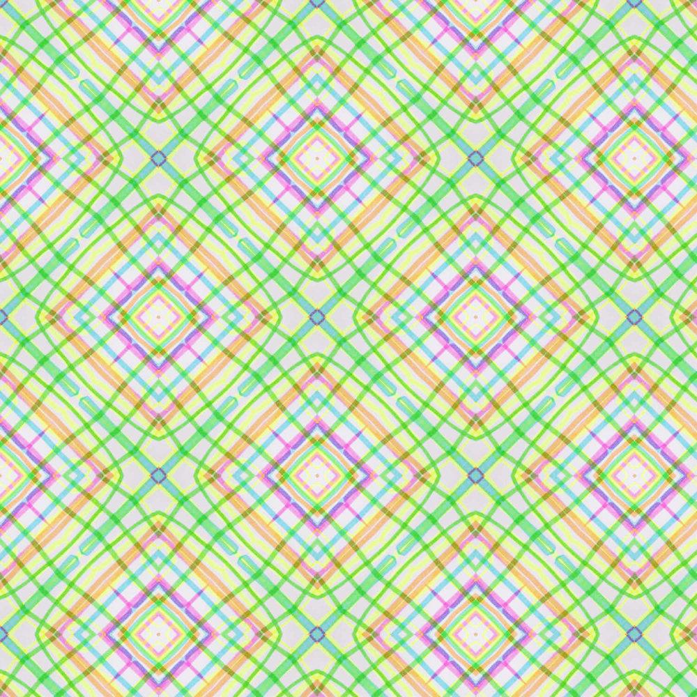 neon-plaid9.amandarouse.jpg