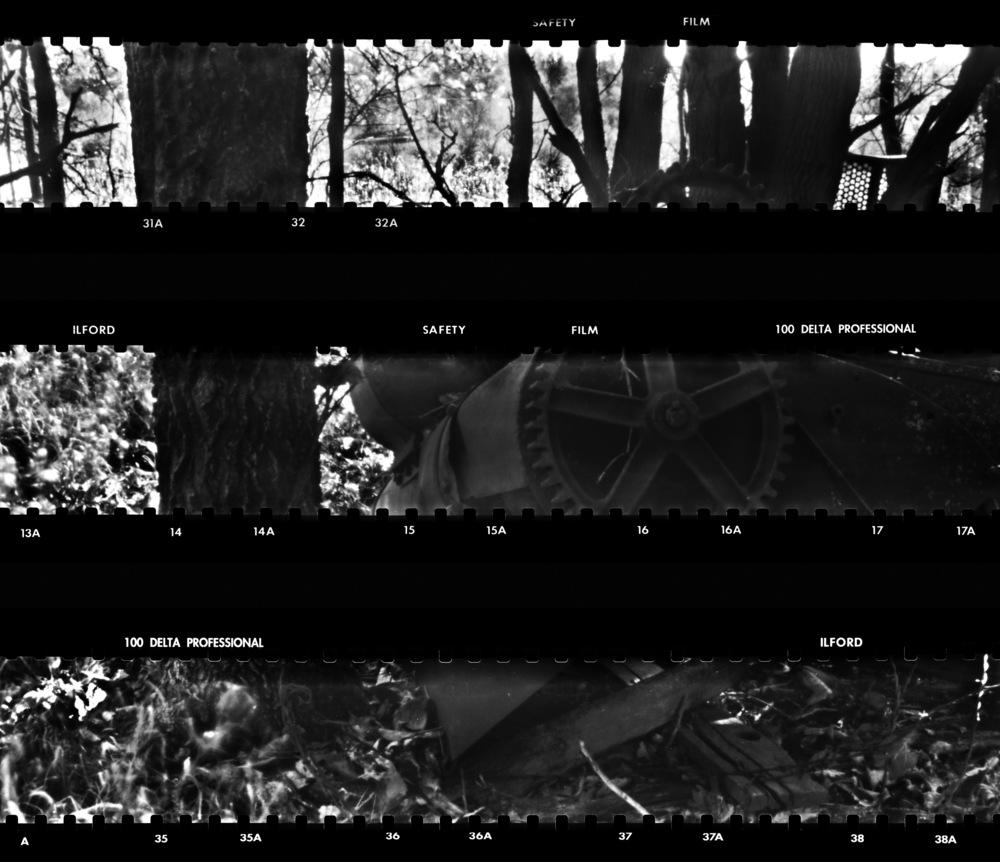 Scan Set 21 + .jpg