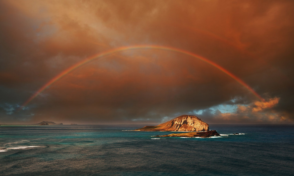 Oahu Rainbows