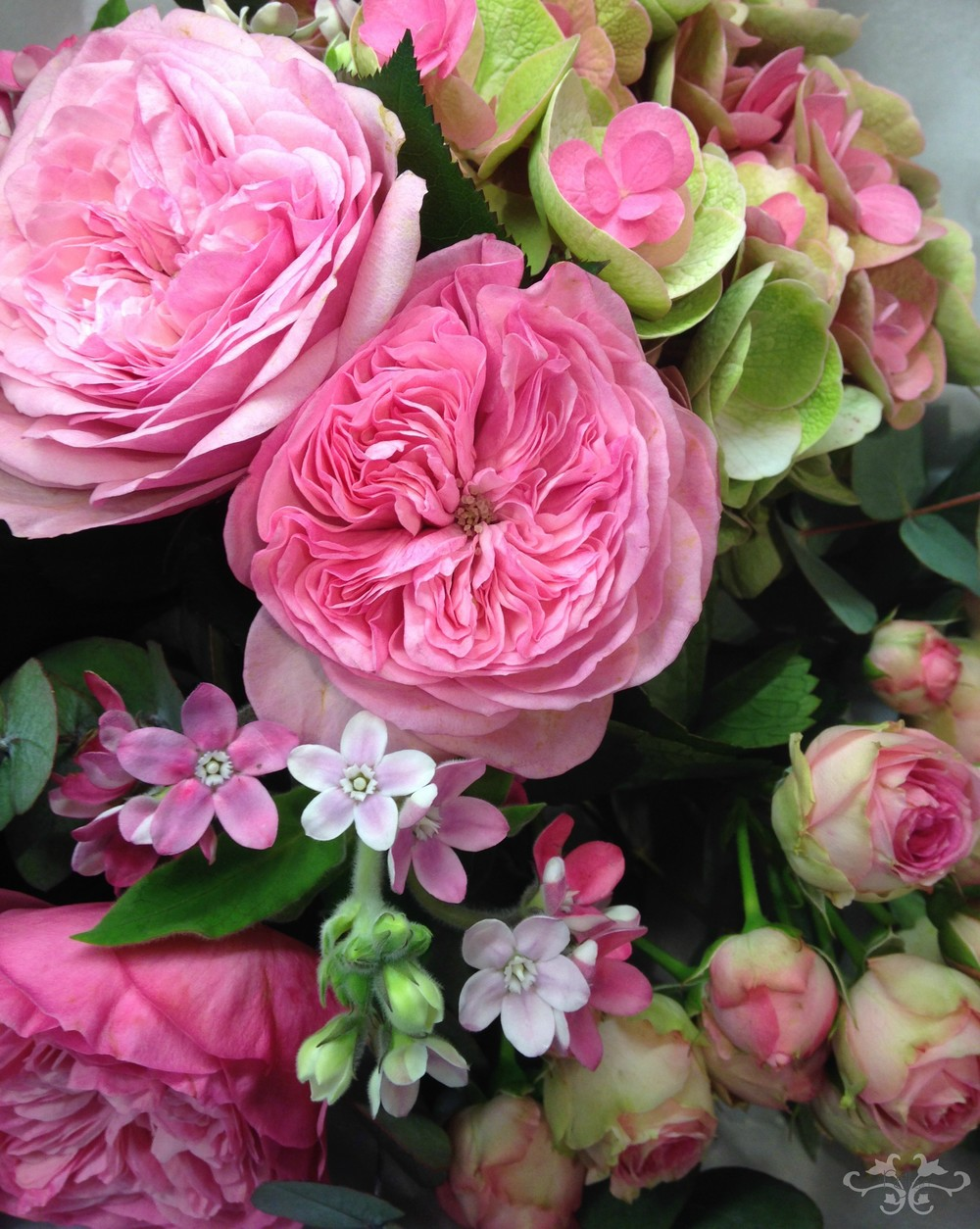 Garden and Spray Roses with Hydrangea