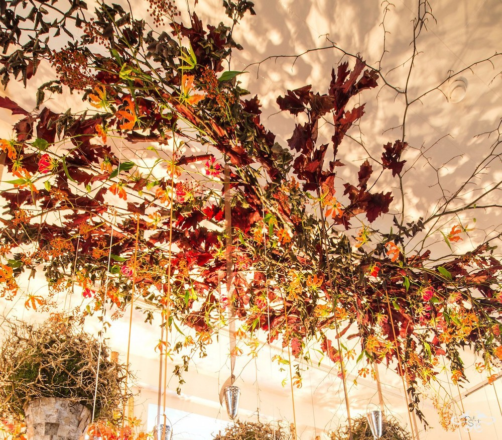 Autumn foliage with stems of Gloriosa created a natural forest-like canopy above the table design.
