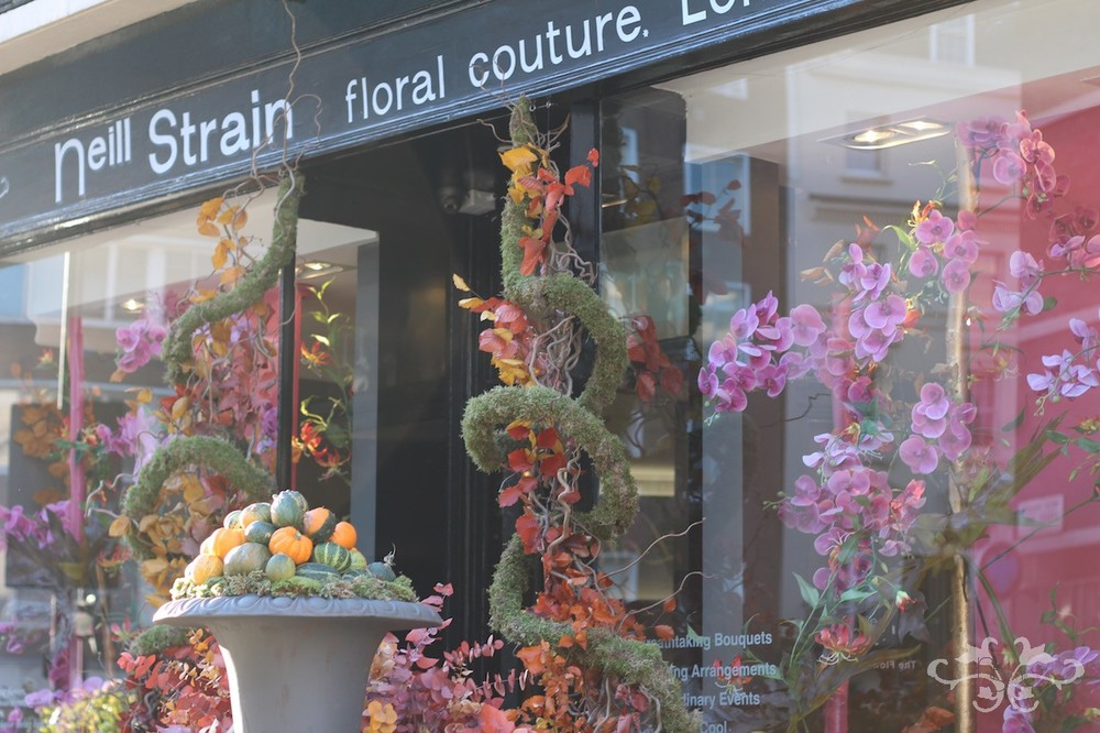 Neill Strain's boutique in Belgravia dressed for autumn.