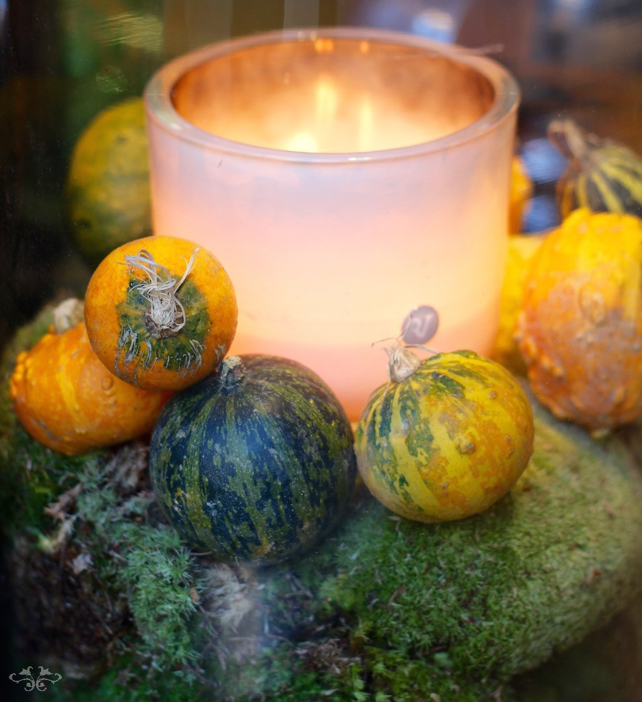 Celebrate Halloween with Neill Strain.  Gourds and candle by Rachel Vosper.