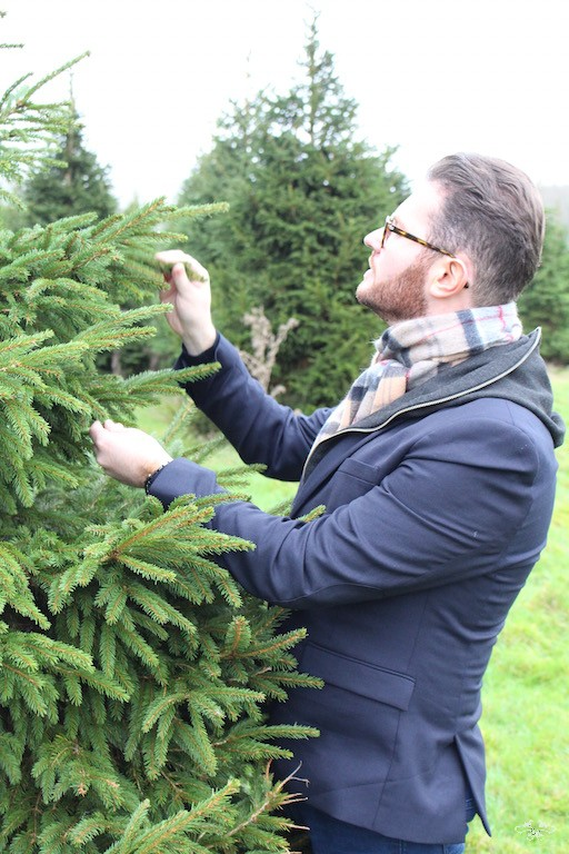 Neill Strain selecting Christmas tree.jpg