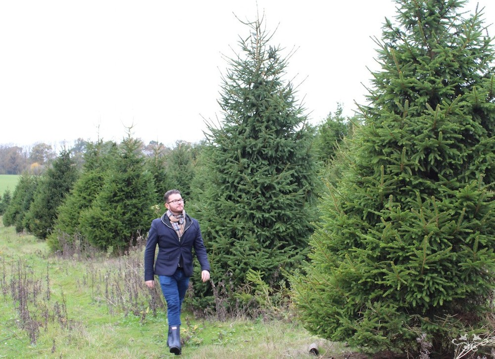 Neill Strain sourcing Christmas trees at Yattendon.jpg