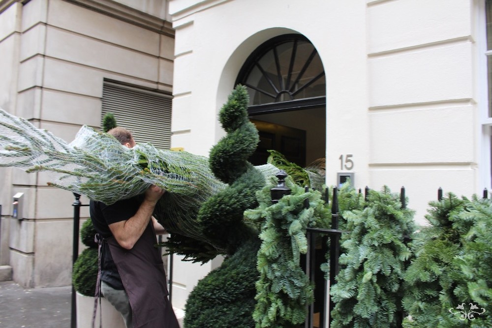 Neill Strain Christmas tree ldeliveries Knightsbridge.jpg